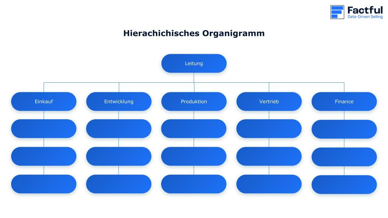 Ein Organigramm wird visuell abgebildet